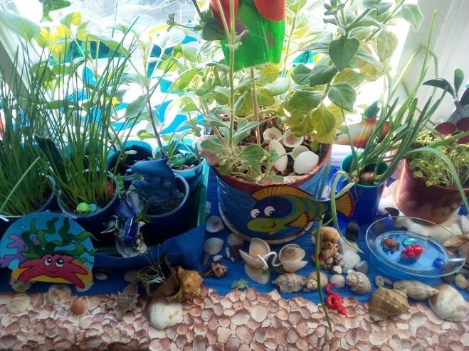 Огород на окошке «Морячок»
